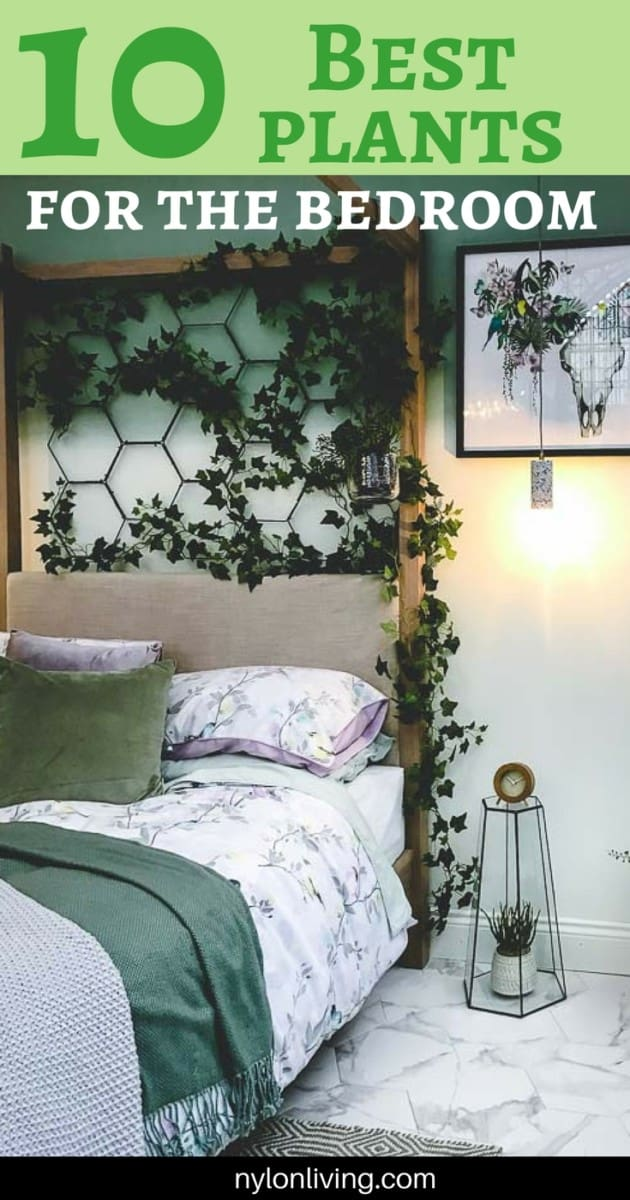 Delightful A Plant Lovers Bedroom (And The 10 Best Plants To Keep In The Bedroom For