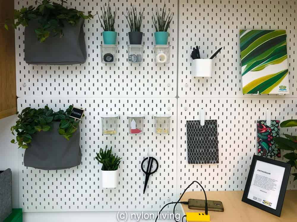 Add some plants to to your pegboard for a quick green pop #ikeaplants #cheapgardenplants #homeoffice #homedesign #homedecor #homeofficeinspo #workspacestyling #study #workspace #workspacegoals #workhardanywhere #officeinspo