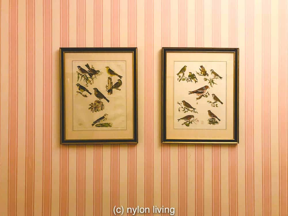 pink and white striped wallpaper with bird prints