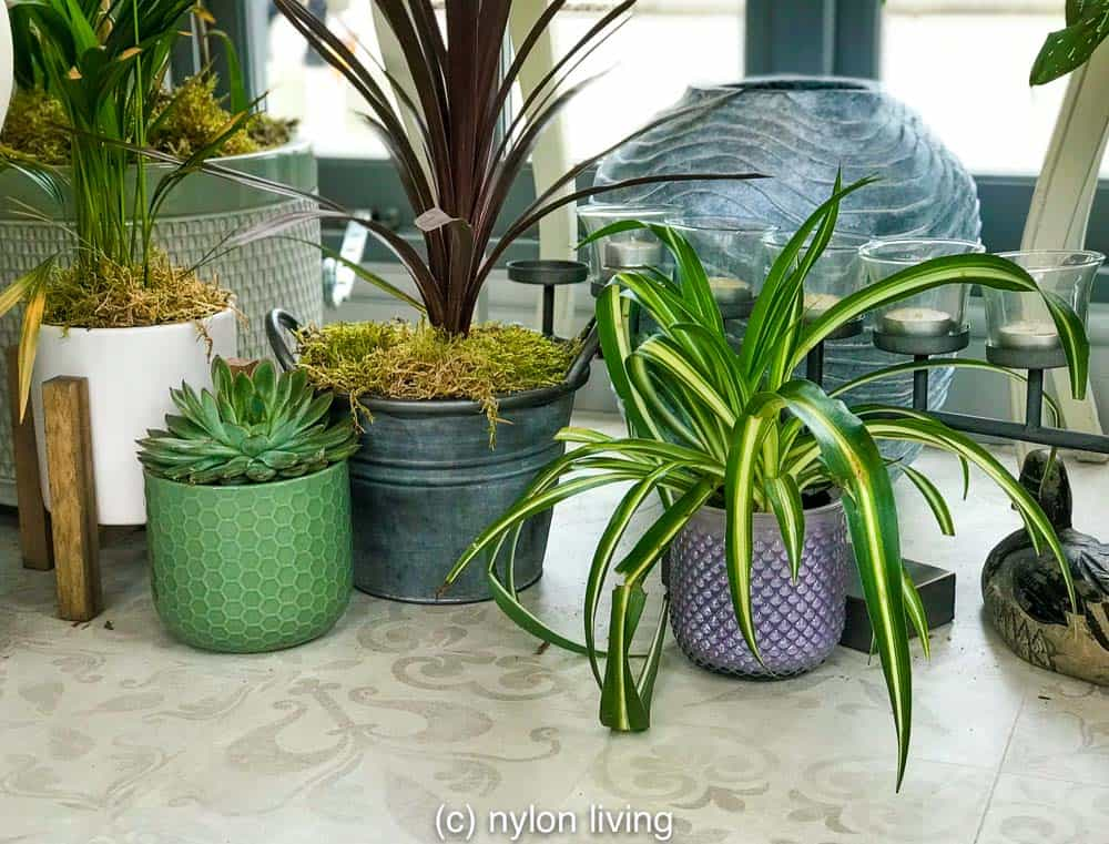 Potted plants add style and charm to your garden summerhouse.