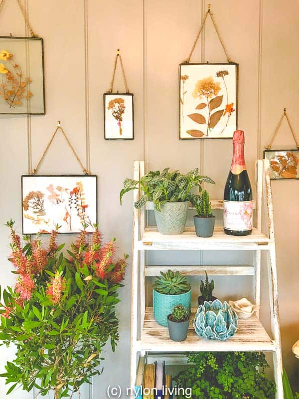 Glam up your modern summerhouse with botanical prints and plants.