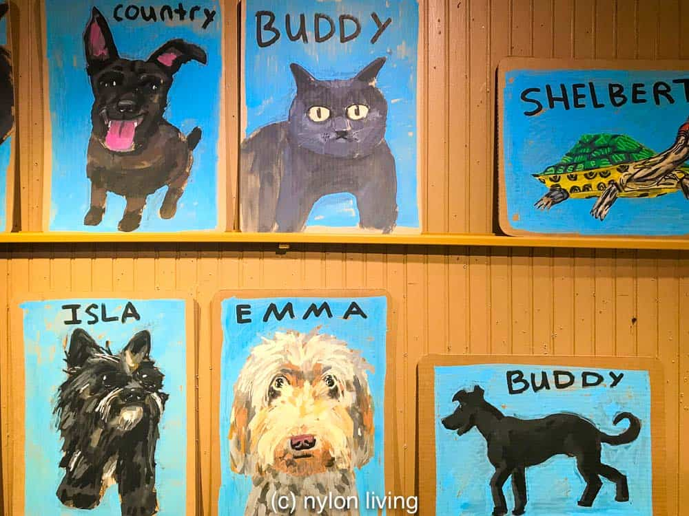 Get your pet portrait done at Fishs Eddy NYC.