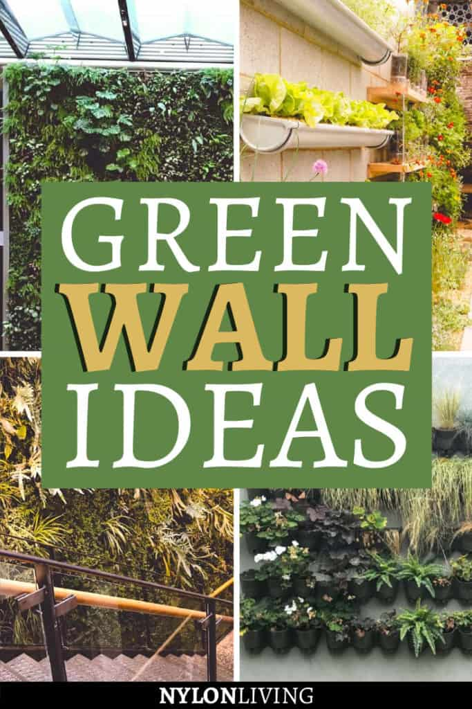 For a small garden space, living walls or green walls are a great idea because you are using less floor space, or simply you want to make a garden wall look better. An incredible green wall design does not have to be out of your budget. Find out how to create an incredible green wall design with green wall planters. #greenwall #gardenwall #gardendecor #gardendesign #gardenideas