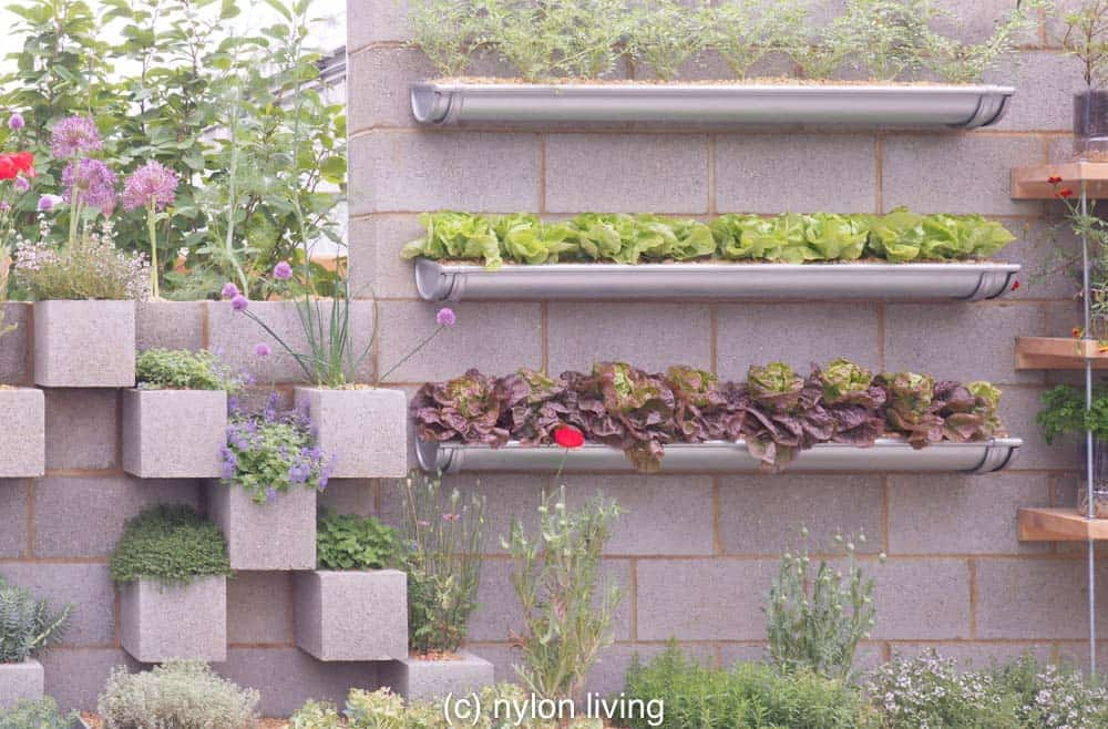 Creative use of green wall planters with items you can find in a DIY store.