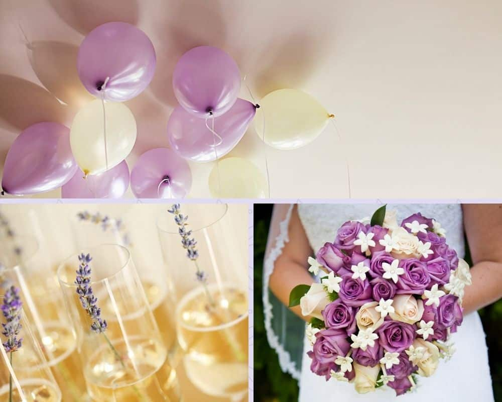 images of lavender and champagne colors